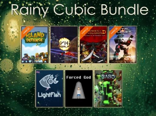 Rainy Cubic Bundle